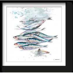 Sardines au sel de l'ile de ré